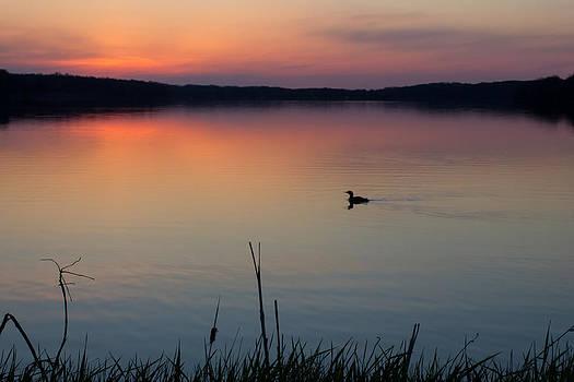 Minnesota Morning by Penny Meyers