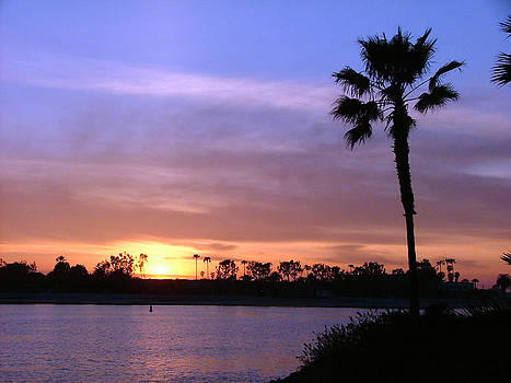 Mission Bay Sunset by Carolyn Burns Bass