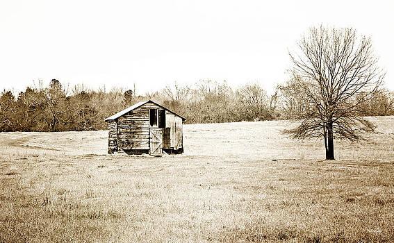Scott Pellegrin - Mississippi Pasture