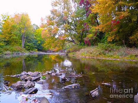 Mississippi River Ontario by Al Hunter