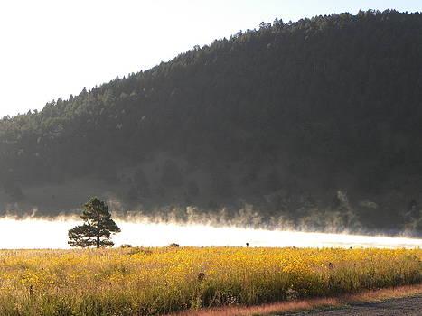 Mist on the Lake by Kyla Heath