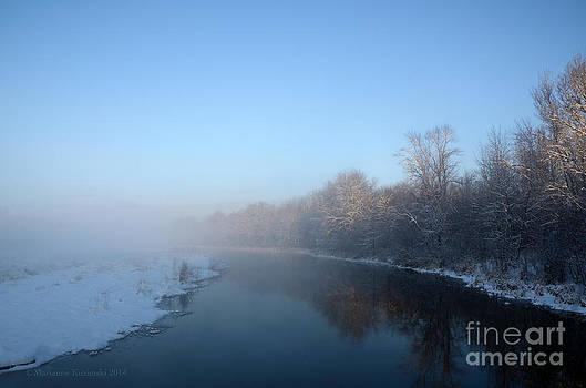 Misty Blues by Marianne Kuzimski