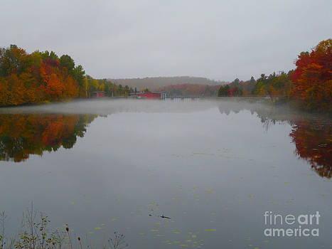Misty Day on the Lake by Avis  Noelle