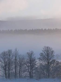 Misty by Jennifer Watson