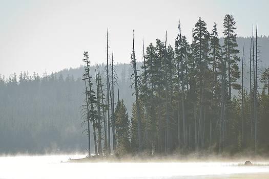 Misty Medicine Lake Morning by Rich Rauenzahn