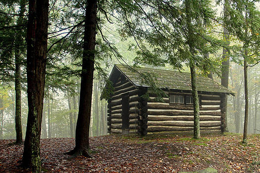 Misty Morning Cabin by Suzanne Stout