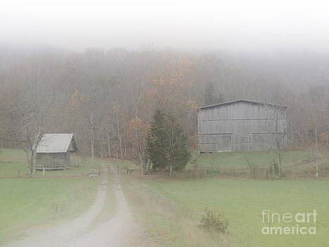 Misty Morning in Appalachia by Phil Penne