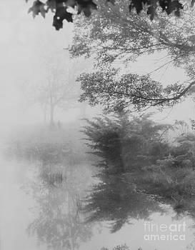 Misty Morning in Gettysburg by Carol Fielding