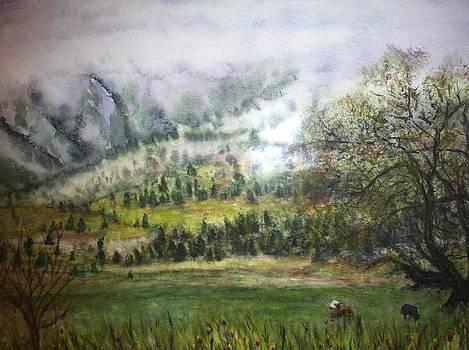 Misty Morning in the Rockies by Carol Warner