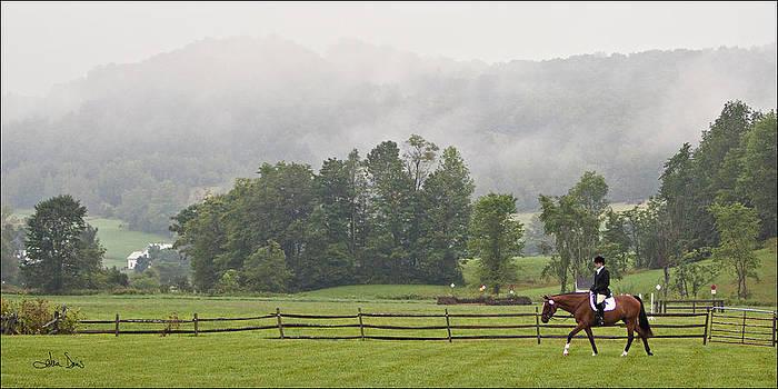 Misty Morning Ride by Joan Davis
