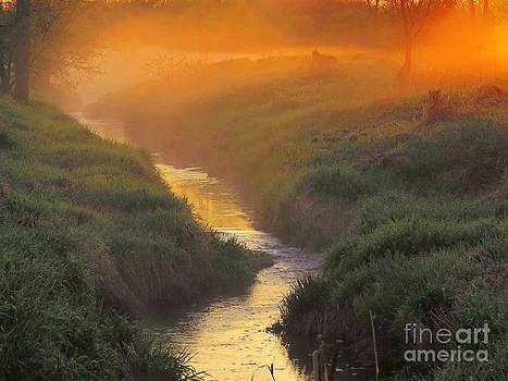 Misty Morning Sunrise by David Lankton
