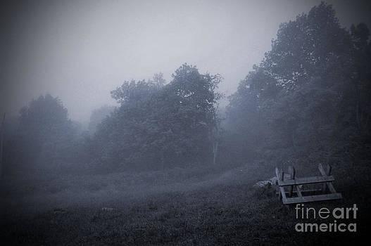 Misty Mountain Morning by Waverley Dixon