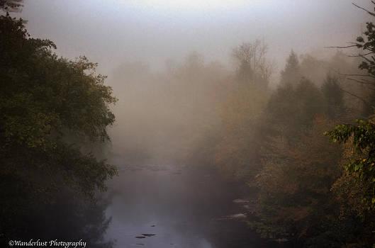 Misty Mtn. Top by Paul Herrmann