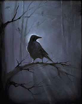 Misty Raven by Randi Evans