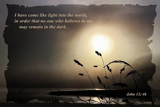 Misty Sunrise Scripture Book Of John  by Anne Macdonald