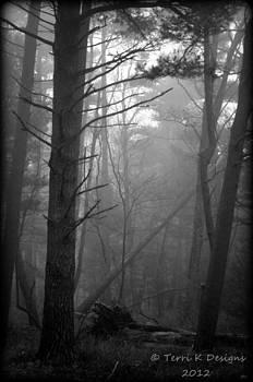 Misty by Terri K Designs