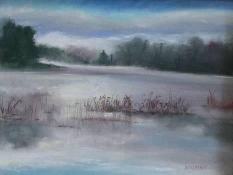 Misty Waters by Linda Dessaint
