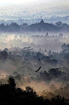 Mistyc Borobudur by Arif Otto