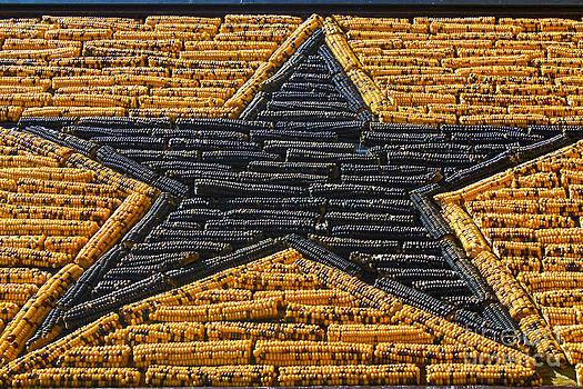 Gregory Dyer - Mitchell Corn Palace - CORN STAR