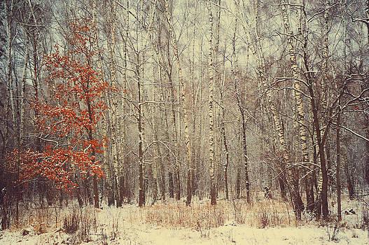 Jenny Rainbow - Mix of Seasons