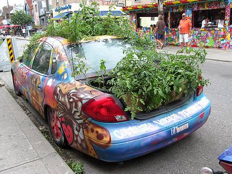 Alfred Ng - mobile garden