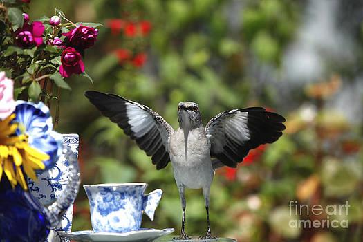 Mockingbird Ready for Tea by Luana K Perez