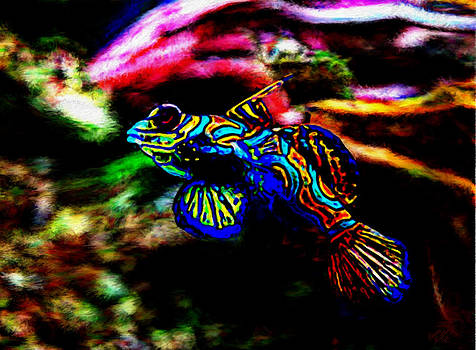 Modernist Tropical Fish by Bruce Nutting