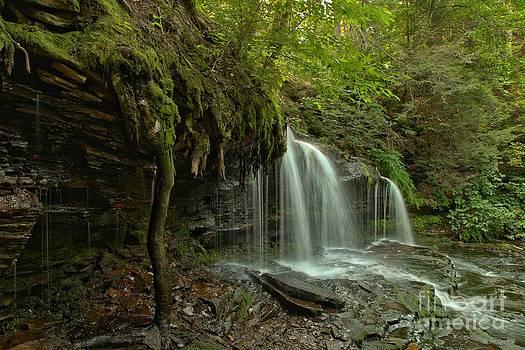 Adam Jewell - Mohawk Falls Landscape