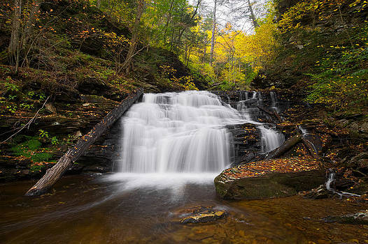 Mohican Falls in Autumn by Tim Devine