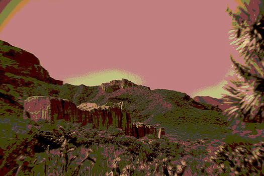 Mojave Desert in Mauve by Sharon McLain