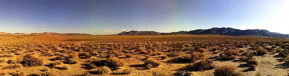 Roberto Prusso - Mojave Desert