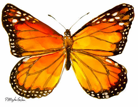 Monarch Butterfly by Patricia Allingham Carlson