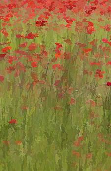 David Letts - Monet Poppies II