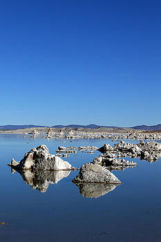 Mono Lake Rocks by Daniela Safarikova