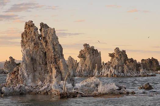 Mono Lake - Tufa Formation by Tim Ai