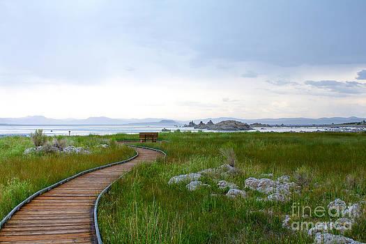 Mono Lake Tufa in solitude by Lisa Anne McKee