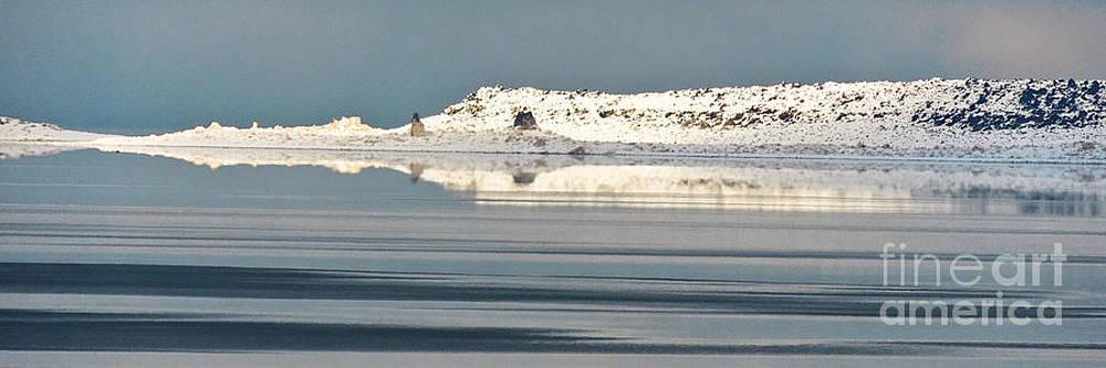 Mono Lake Winter Reflection by L J Oakes