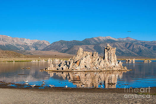 Jamie Pham - Mono Morning - Strange Tufa Towers of Mono Lake in California.