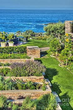 David  Zanzinger - Montage Laguna Beach Herb Garden