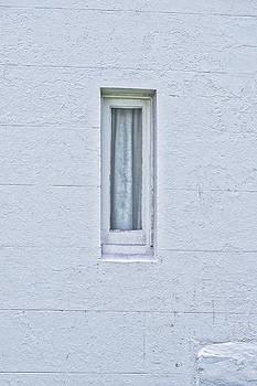 Steven Ralser - Montague Island Window - Australia
