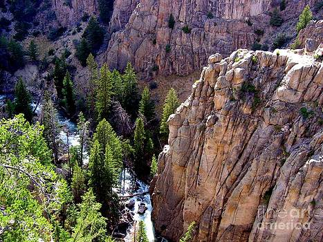 Montana Cliff View by Jaunine Roberts