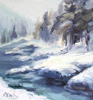Montana Pines by Patricia Seitz