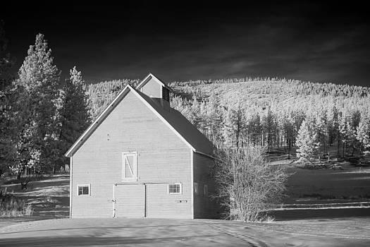 Montana Snowy Barn by Paul Bartoszek