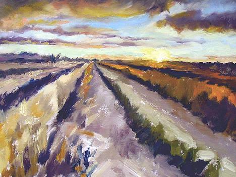 Montana Sunset by Patricia Seitz