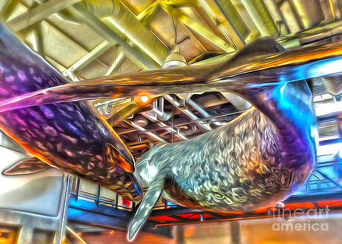 Gregory Dyer - Monterey Bay Aquarium - Whales