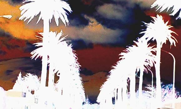 Moody Blues by Linda Hollis