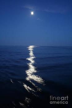 Moon Glow by Susan Meade