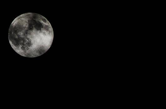 Moon III by Anna Azmitia