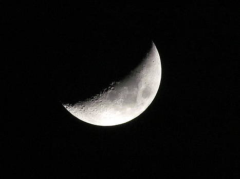 Moon in Mexico by Dianne Furphy