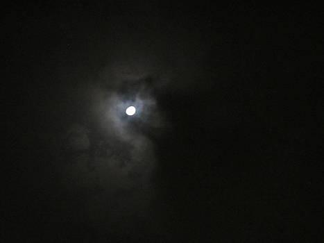 Moon In The Night by Raahi Raza